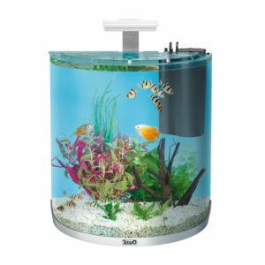 Tetra AquaArt Explorer - Nano Aquarium Komplettset
